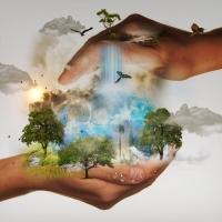 CSR - społeczna odpowiedzialność biznesu sposobem na budowanie marki