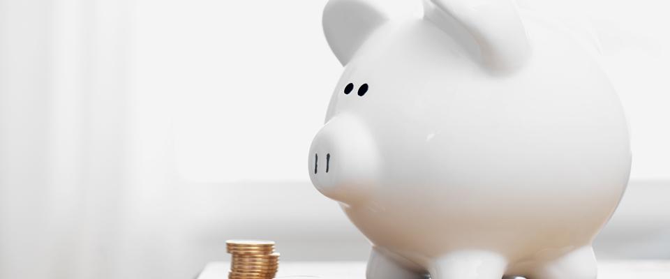 Artykuł: Finanse dla nie finansistów